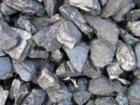 Nut Coal